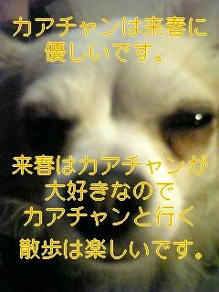 f0148927_1726022.jpg