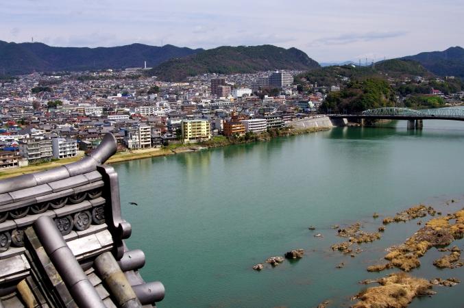 国宝・犬山城 桜_d0145934_8524981.jpg
