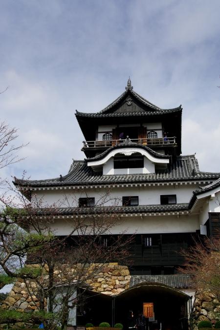 国宝・犬山城 桜_d0145934_8562222.jpg