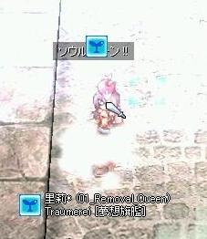f0082647_154252.jpg