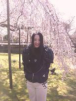 京都の桜_c0187754_819699.jpg