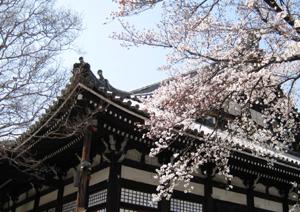 本隆寺(ほんりゅうじ)_e0139459_1175041.jpg