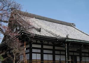 本隆寺(ほんりゅうじ)_e0139459_1275058.jpg