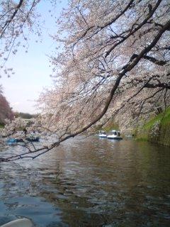 ユキヒロさん_f0064823_1261214.jpg
