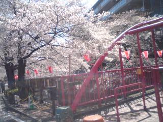 橋_f0064823_13231336.jpg
