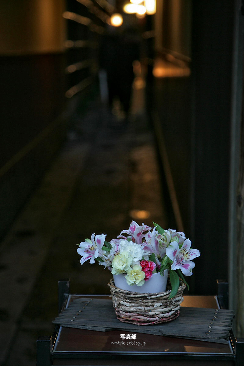 京都 木屋町 桜スナップ   1_f0021869_23472693.jpg
