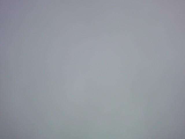 「寒いなぁ…。曇り空。」_e0051174_7122348.jpg