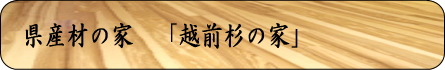 越前に暮らす、「越前杉の家」 分譲住宅内覧会_a0073775_23562254.jpg