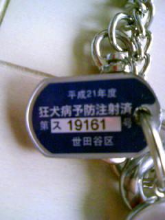 e0165587_642427.jpg