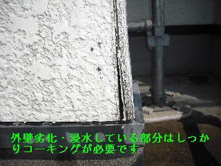 f0031037_19514182.jpg