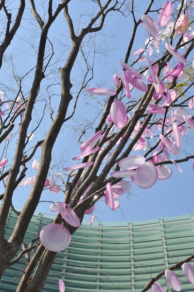 六本木・東京ミッドタウン、国立新美術館の桜_a0003650_23415659.jpg