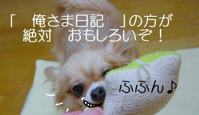 b0112758_23111210.jpg