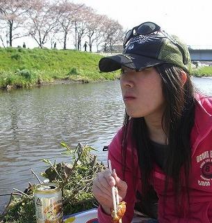ホームタウンの桜状況 4_d0061678_23342661.jpg