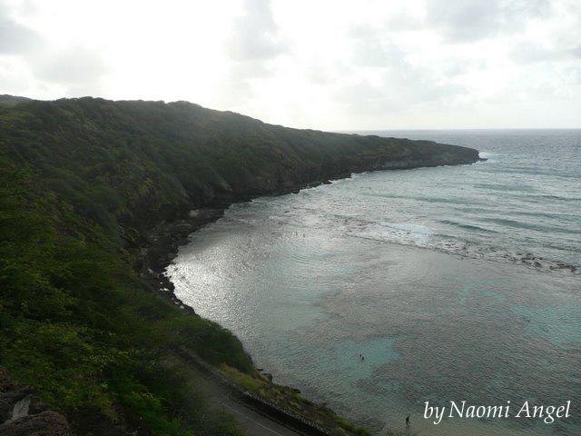 God of Hawaii vol.5 - ハワイの神様 vol.5 -_f0186787_13433589.jpg