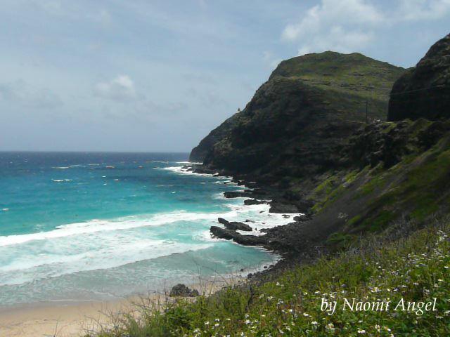 God of Hawaii vol.5 - ハワイの神様 vol.5 -_f0186787_13491429.jpg