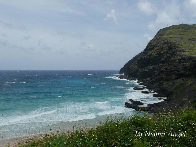God of Hawaii vol.5 - ハワイの神様 vol.5 -_f0186787_13584888.jpg