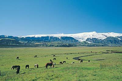 発表!6月の観光シーズンにアイスランドの大自然を楽しむエコ・スパ&温泉三昧ツアー_c0003620_2030761.jpg