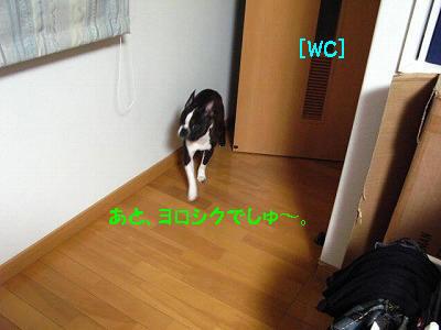 b0136826_18281275.jpg