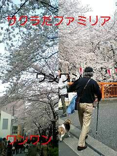 e0059834_20194683.jpg
