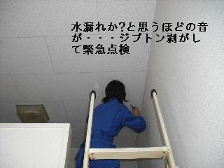 f0031037_2061654.jpg