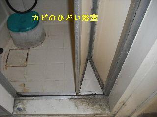 f0031037_206638.jpg