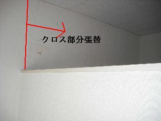 f0031037_2072261.jpg