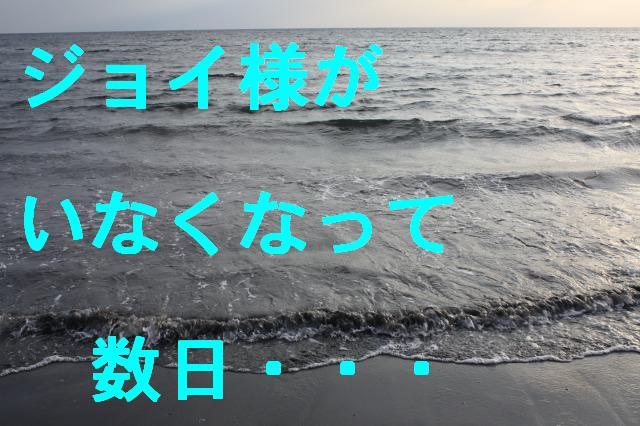 c0173042_219193.jpg