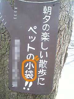 a0042044_043010.jpg