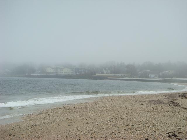 ロングアイランドの海辺を散歩して、_d0100880_936298.jpg