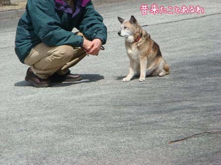 涙の別れと涙の再会_f0064906_18421115.jpg