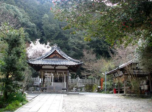 大豊神社_e0048413_20203441.jpg