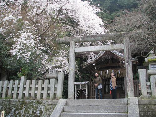 大豊神社_e0048413_20262455.jpg