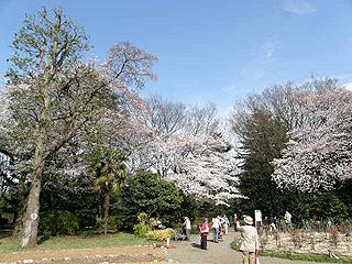 神代植物園_c0025217_0504.jpg