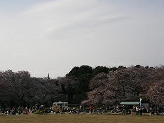 神代植物園_c0025217_081439.jpg