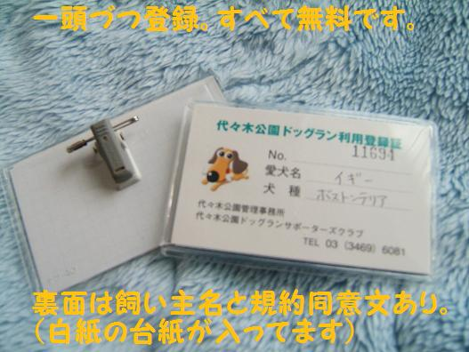 f0161822_17301643.jpg