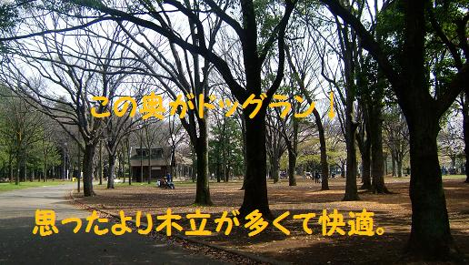 f0161822_1730386.jpg