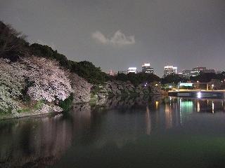 桜 桜 桜@千鳥ヶ淵_d0113725_164228.jpg