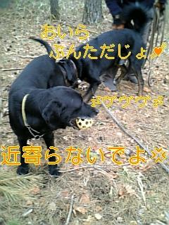 f0148927_9493385.jpg
