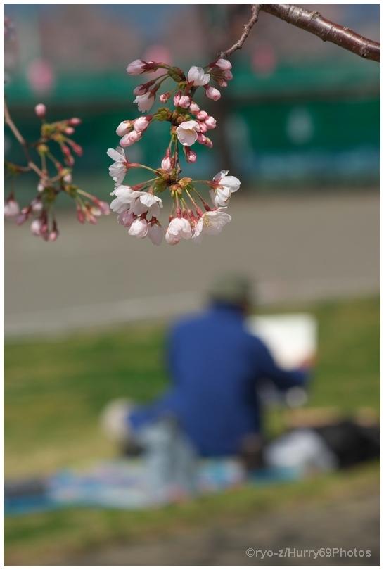 春の画家_e0063851_1742063.jpg