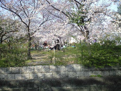 お花見客がいっぱい_d0003977_17345945.jpg