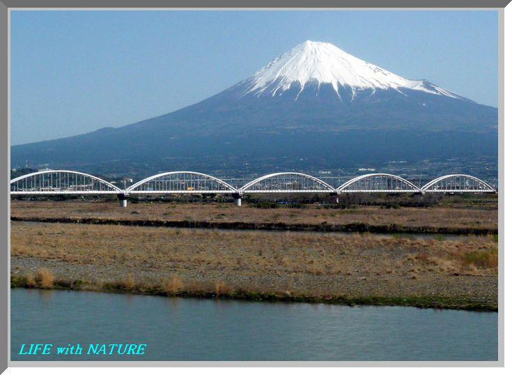 新幹線車窓から_b0093088_859932.jpg