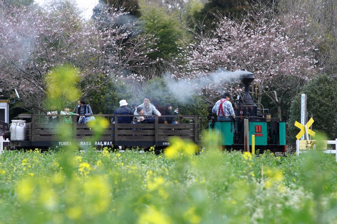 春色のまきば線_e0001789_10255045.jpg