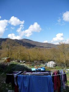 洗濯日和♪_f0106597_2243146.jpg