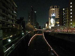 目黒川_c0025217_11385896.jpg