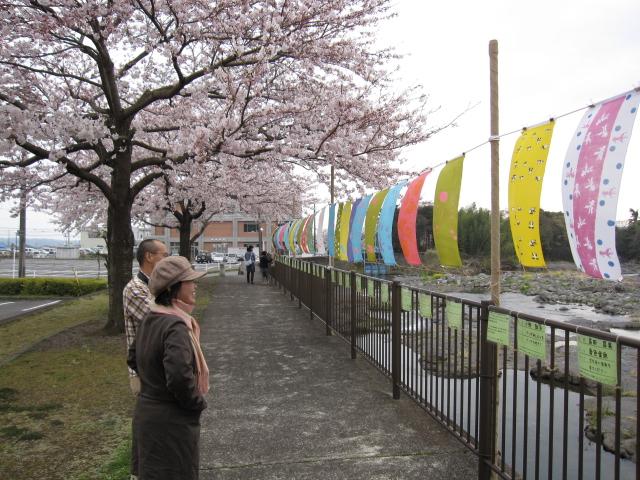 春らんまん✿じぶん色の手ぬぐい ひらり~現場から_f0180433_2024549.jpg