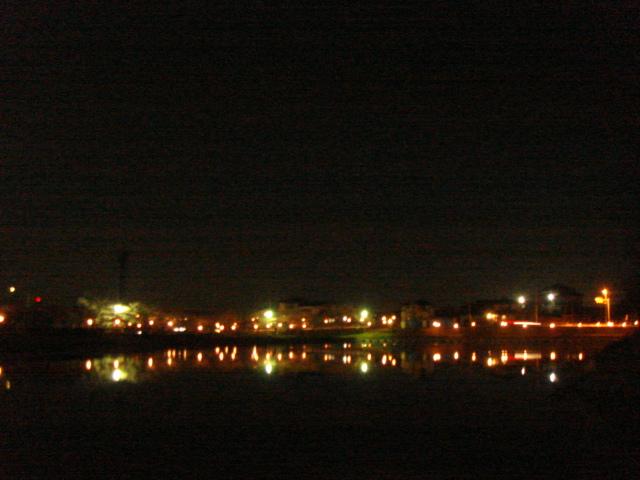 北条大池の夜桜_b0124462_2142319.jpg