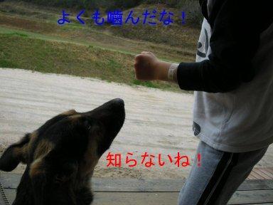 b0113663_9393250.jpg