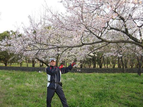 ★天気良し!花見!★_e0147297_22383938.jpg