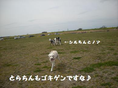 f0081100_22433513.jpg