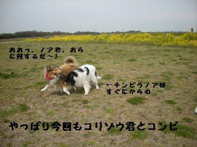f0081100_22441272.jpg